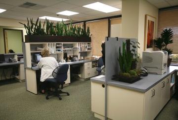 Long Beach-Internal-Medical-Group-Reception-Office